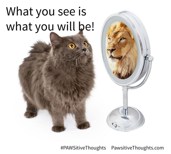 44381569 - conceptual image of a cat looking into the mirror and seeing a reflection of a large lion